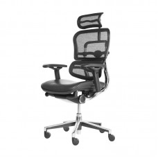 BOSS CHAIR DF-1076