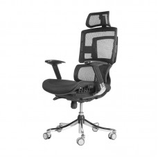 BOSS CHAIR DF-1077