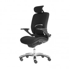 BOSS CHAIR DF-1079